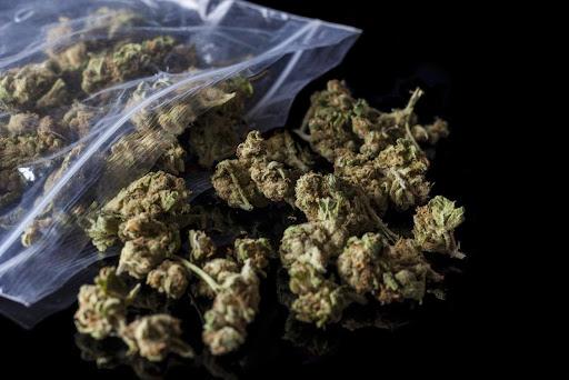 Explore the Many Benefits of Cannabis and Marijuana Products